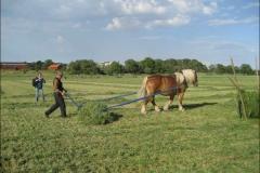lovsta_2008