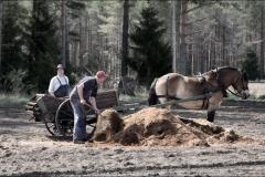 vårbruk-20170521-038