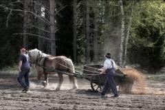 vårbruk-20170521-048