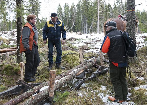 skogsdagen-20120310-006