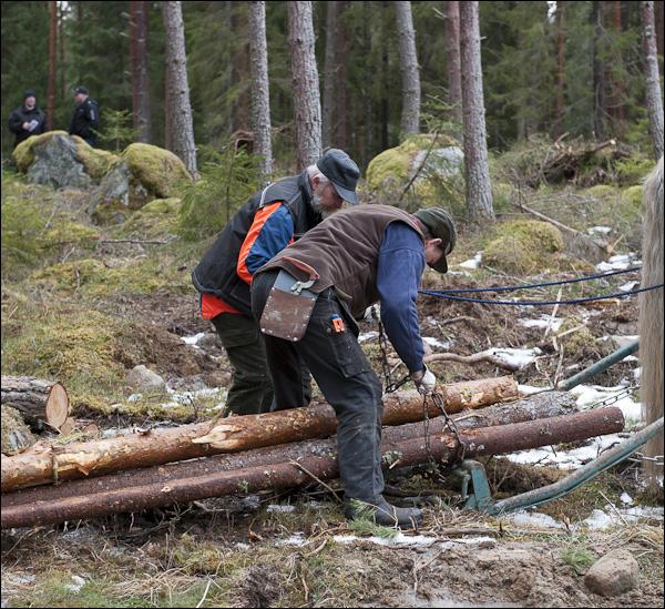 skogsdagen-20120310-033