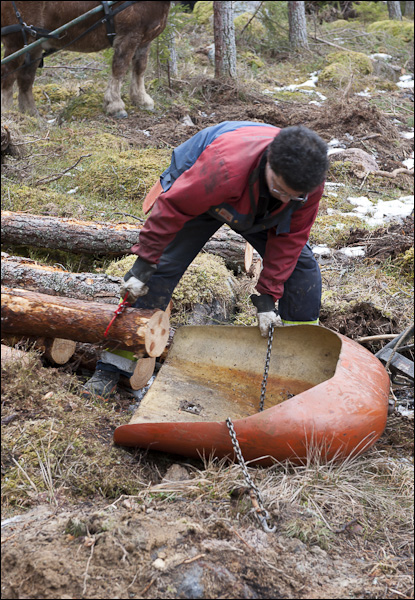 skogsdagen-20120310-047