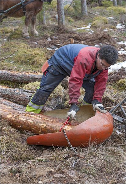 skogsdagen-20120310-048