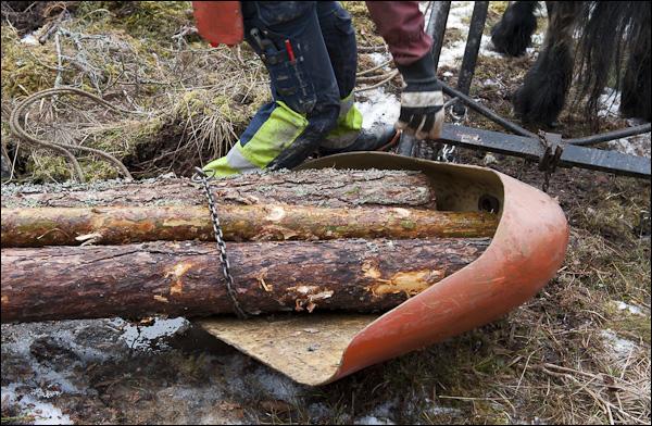skogsdagen-20120310-068