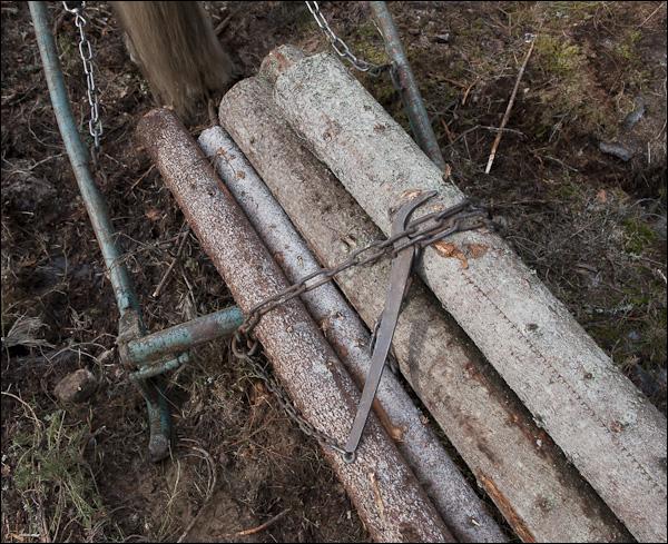 skogsdagen-20120310-127