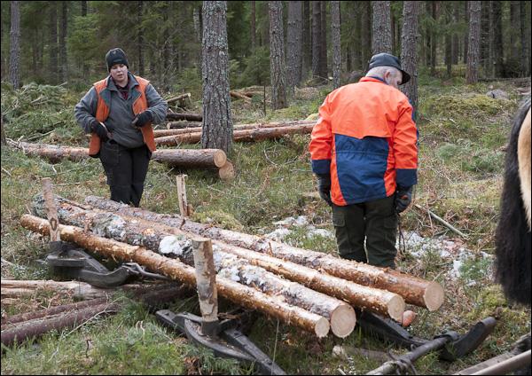 skogsdagen-20120310-151