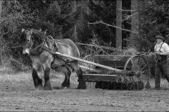 grimsåker-041